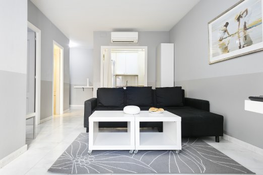 Passeig de Gracia 1 bedroom Apartment - Barcelona