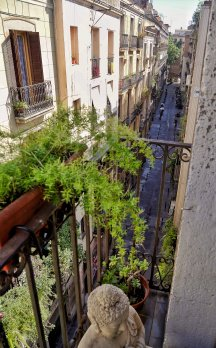 Explore Old Barcelona from a Loft-Style Studio ¤ - Barcelona