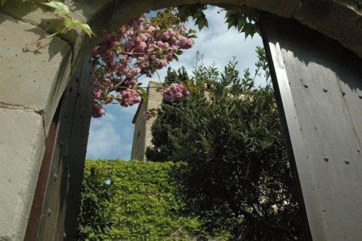 Spectacular Castle in Palau Sator  - Barcelona